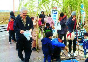サトウキビを収穫する参加者